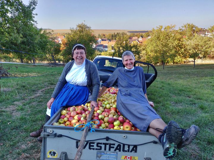 """Innerhalb von zwei Tagen sammeln die Schwestern und das Team der Geistlichen Jugend- und Familienbegegnungsstätte """"Wirbelwind"""" in Würzburg unzählige Äpfel und pressen daraus rund 500 Liter Apfelsaft."""