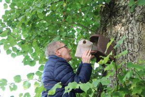 Bewohner Klaus Wetz beim Säubern eines Nistkastens auf dem Simonshof der Caritas.