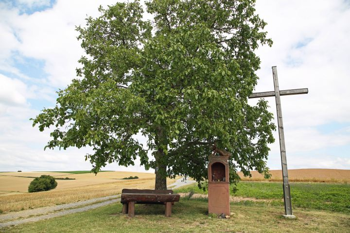"""Am """"Thüngersheimer Kreuz"""" lädt eine Bank mit einer spektakulären Aussicht über die unterfränkische Landschaft zur Rast ein."""