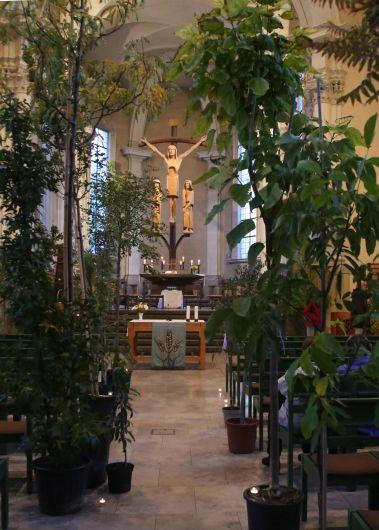 Ein Hauch von Regenwald bot sich Besuchern in der Stephanskirche.