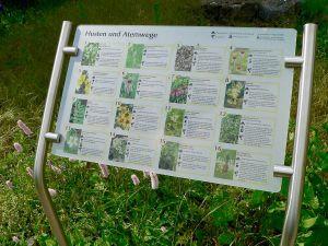 Hinweistafeln mit Erläuterungen zu verschiedenen  Heilkräutern und ihrer Wirkung finden sich überall im Apothekergarten in Schonungen.