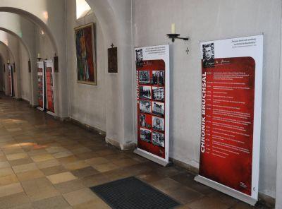 Über das Leben und Wirken von Pallottinerpater Franz Reinisch, der als einziger Priester während der Diktatur der Nationalsozialisten den Fahneneid auf Adolf Hitler verweigerte und dafür getötet wurde, informiert derzeit eine Ausstellung in der Würzburger Pfarrkirche Heiligkreuz.
